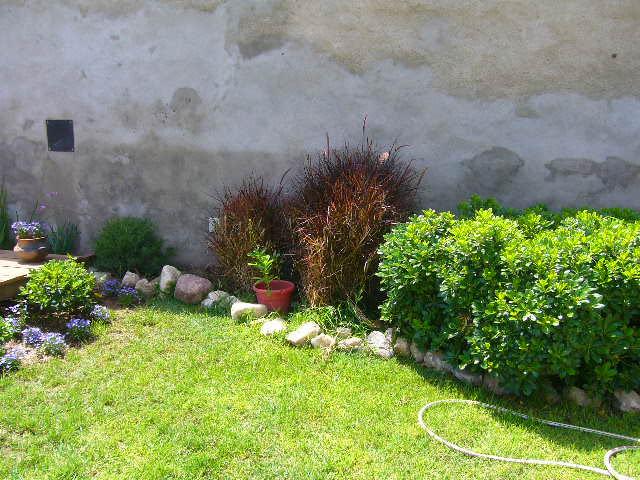 Casa hogar jardiner a for Jardineria en casa